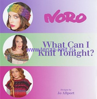 Noro WHAT CAN I KNIT TONIGHT