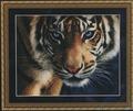 Kustom Krafts Набор Голубоглазый тигр