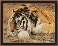 Kustom Krafts Набор Раджа-сибирский тигр